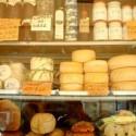 Ecco i prodotti ottenuti con il latte della pecora moscia leccese