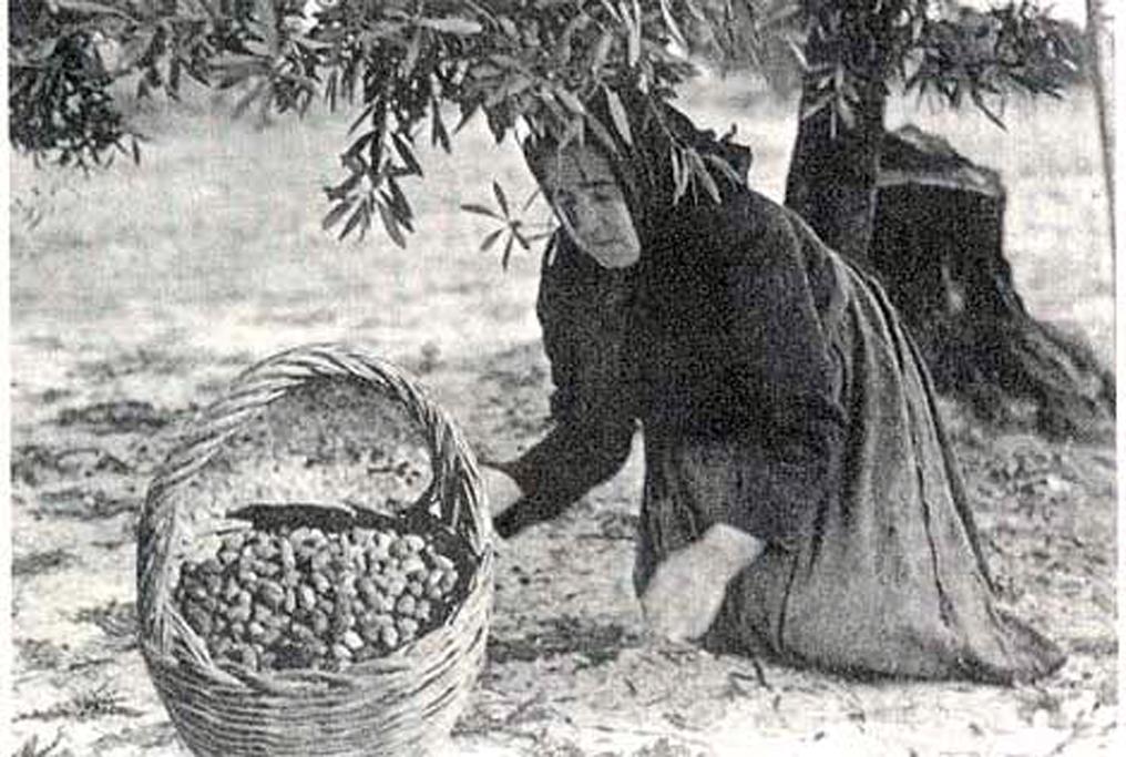 Proverbi agricoli salentini tra gennaio e aprile for Che tipo di prestito puoi comprare terra