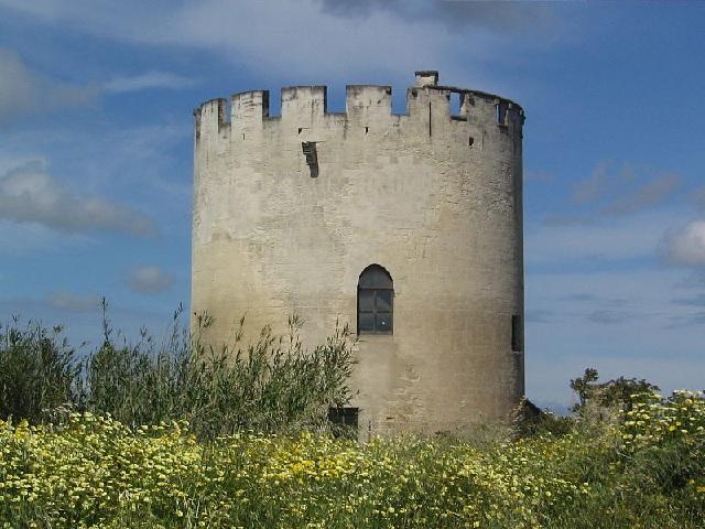 Immagine tratta da http://it.wikipedia.org/wiki/File:Torre_di_Belloluogo_Lecce.jpg